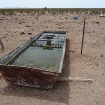 nm-water-trough