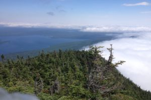 View Near Horn Pond on Appalachian Trail