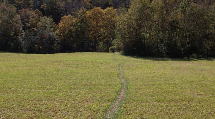 Trails, Orange Soda & Empty Cabins