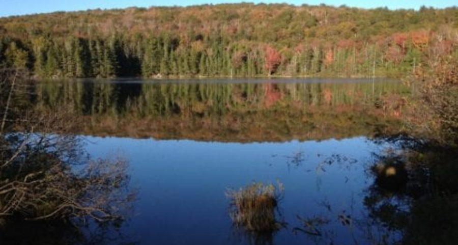 Vermont Campsite