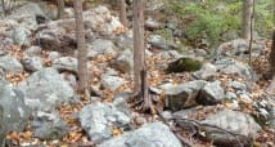 Appalchian Trail Rocks