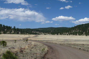 Outside Reserve, NM