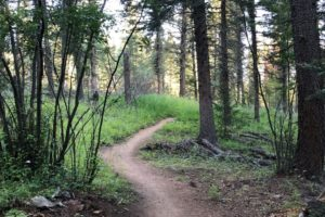 Long Days | Colorado Trail – Average Hiker