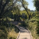 Appalachian Trail RR Stop | AT - Average Hiker