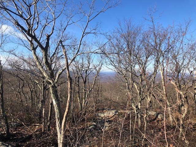 Views from Mt. Egbert