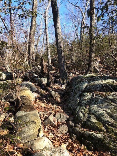 NY Terrain on the Appalachian Trail