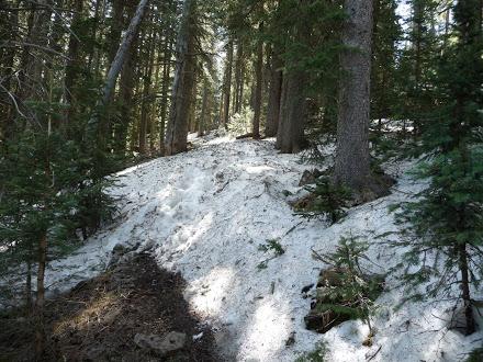 Snow on Mount Taylor