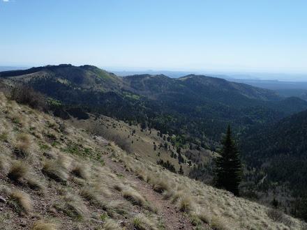 Summit Climb Mt Taylor