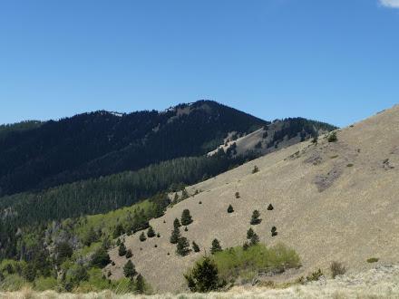 Mt Taylor Ridge Views