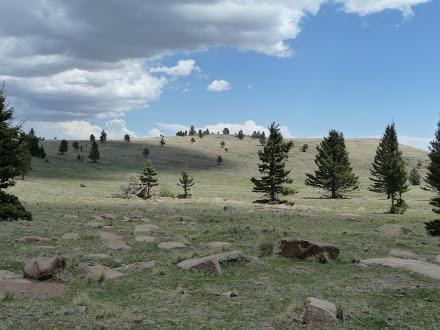 Past Mt Taylor