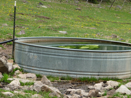 American Canyon Spring Tank