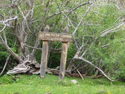 American Canyon Spring