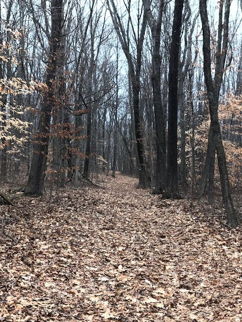 Housatonic Ridge Trail