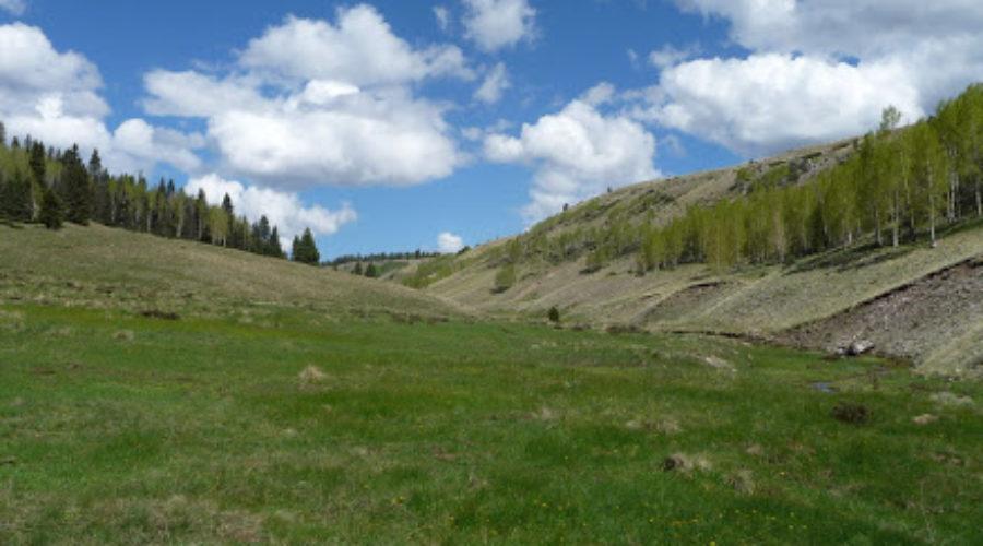 San Pedro View