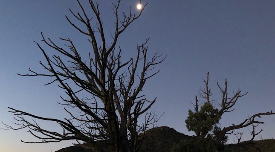 Moon rise on the AZT