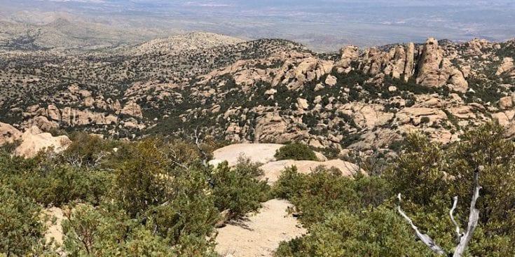 Half Way Down Mica Mountain