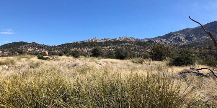 Near Rincon Mountain Range