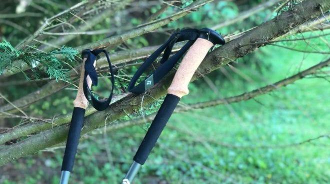 black diamond alpine carbon cork hiking poles
