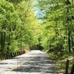 mattabesett net foothills road
