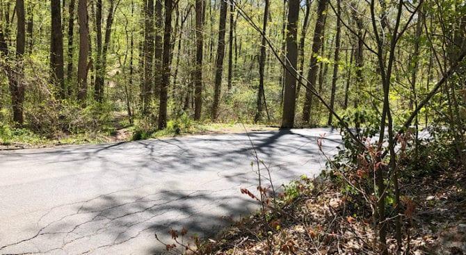 mattabesett bear hill road