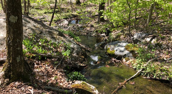 creek on the mattabesett NET