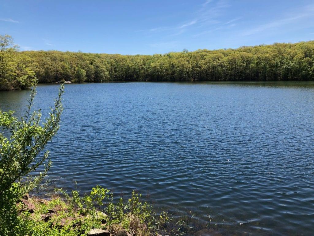 net mattabesett millers pond near fishing