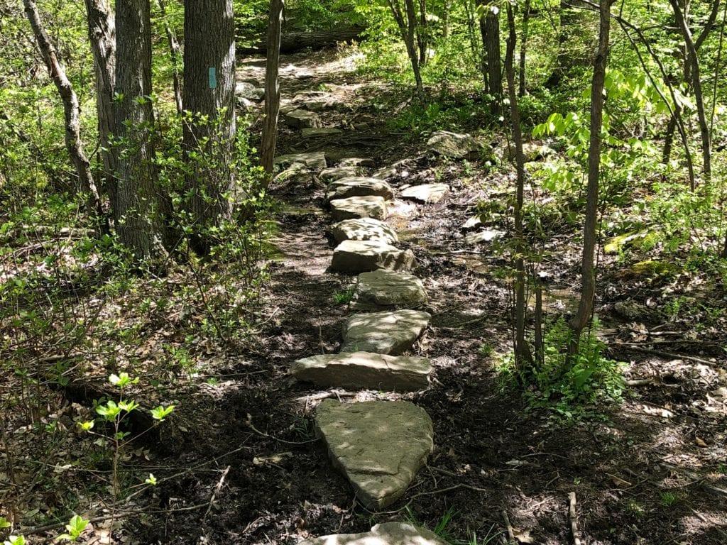 net mattabesett trail mud