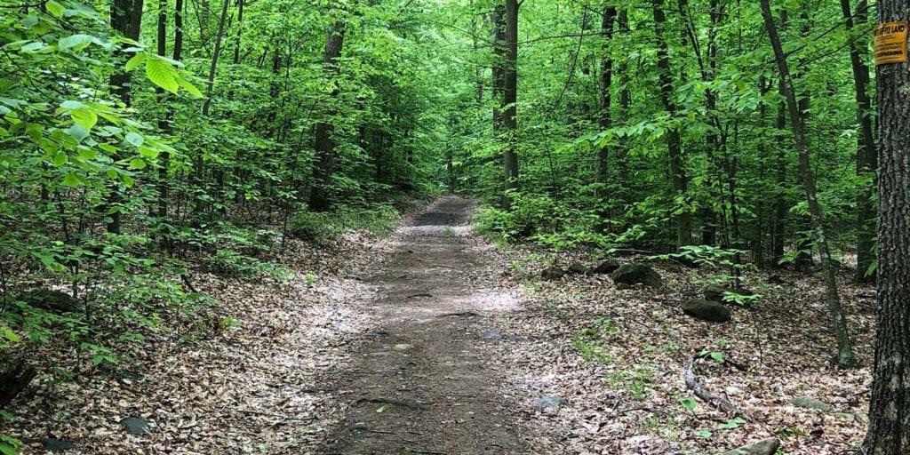 net menunkatuck leading to hart road