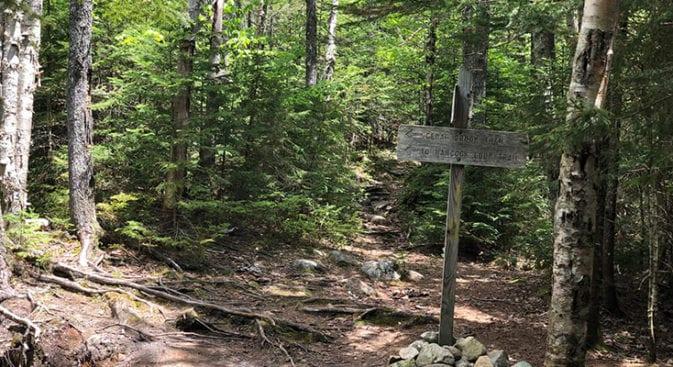 cedar brook trail junction sign
