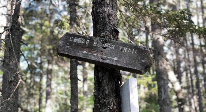 old cedar brook sign