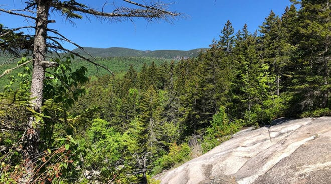 View from Near Top of Thoreau Falls