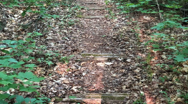 railroad ties on the wilderness trail