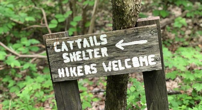 net mattabesett cattail shelter sign