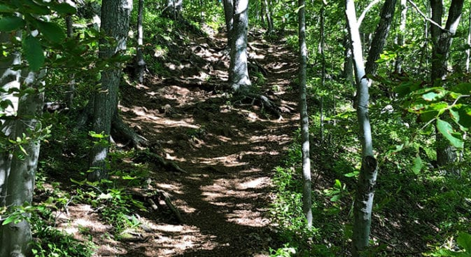 climb up from durham road on new england trail