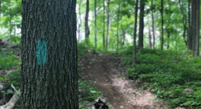 steep trail climbs on section 10