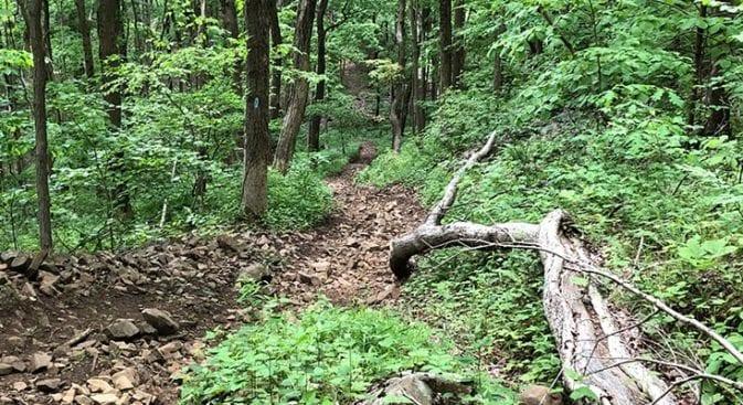 net mattabesett steep climb after howd road
