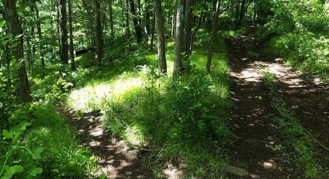 new england trail quick trail split