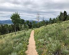 colorado trail near kenosha pass backpacking average hiker