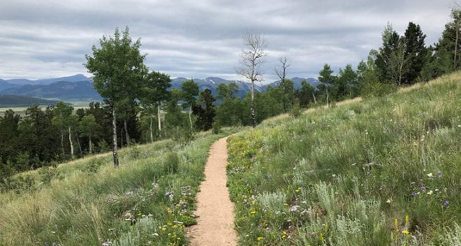 Colorado Trail Gear List – Big 3 Changes!   Average Hiker