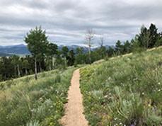 colorado trail near kenosha pass and backpacking by average hiker