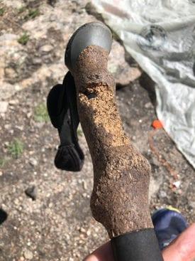 Hiking pole chewed by animal