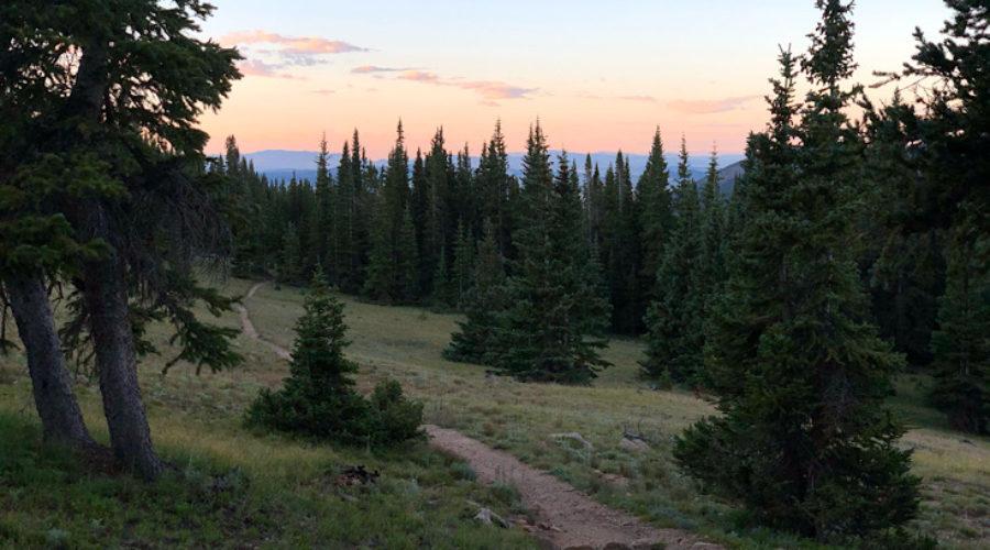 Colorado Trail Day 5 – Fat Bikes! | Average Hiker