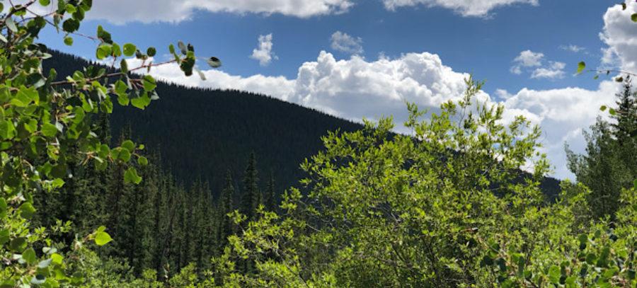 Creek at beginning of Lost Creek Wilderness