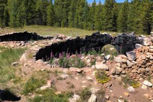 Colorado Trail Day 10 – Leadville | Average Hiker
