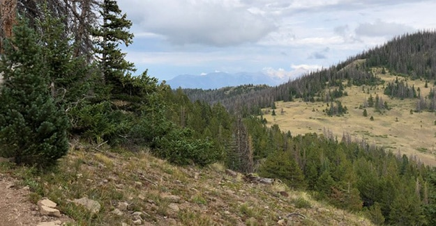 Colorado Trail Day 25 Coming Out of Monarch Pass