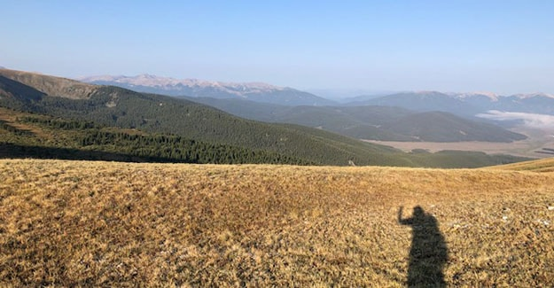 Hiking Shadow on the way to Cottonwood Pass