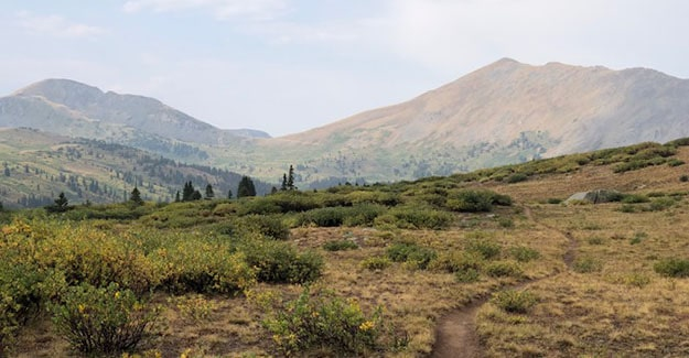 Hike Down Towards North Fork of Chalk Creek by Average Hiker