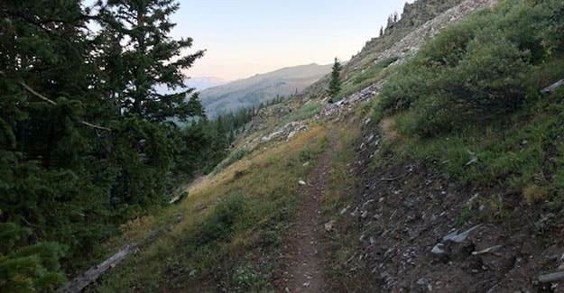 Drop into Forest on way to Cottonwood after Sanford Saddle
