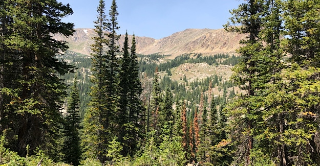 Holy Cross Wilderness Mountains