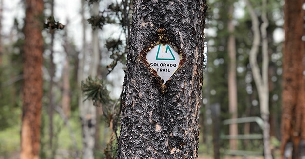 Backpacking on Colorado Trail by Trail Emblem